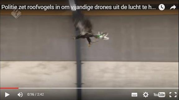 aquila anti drone